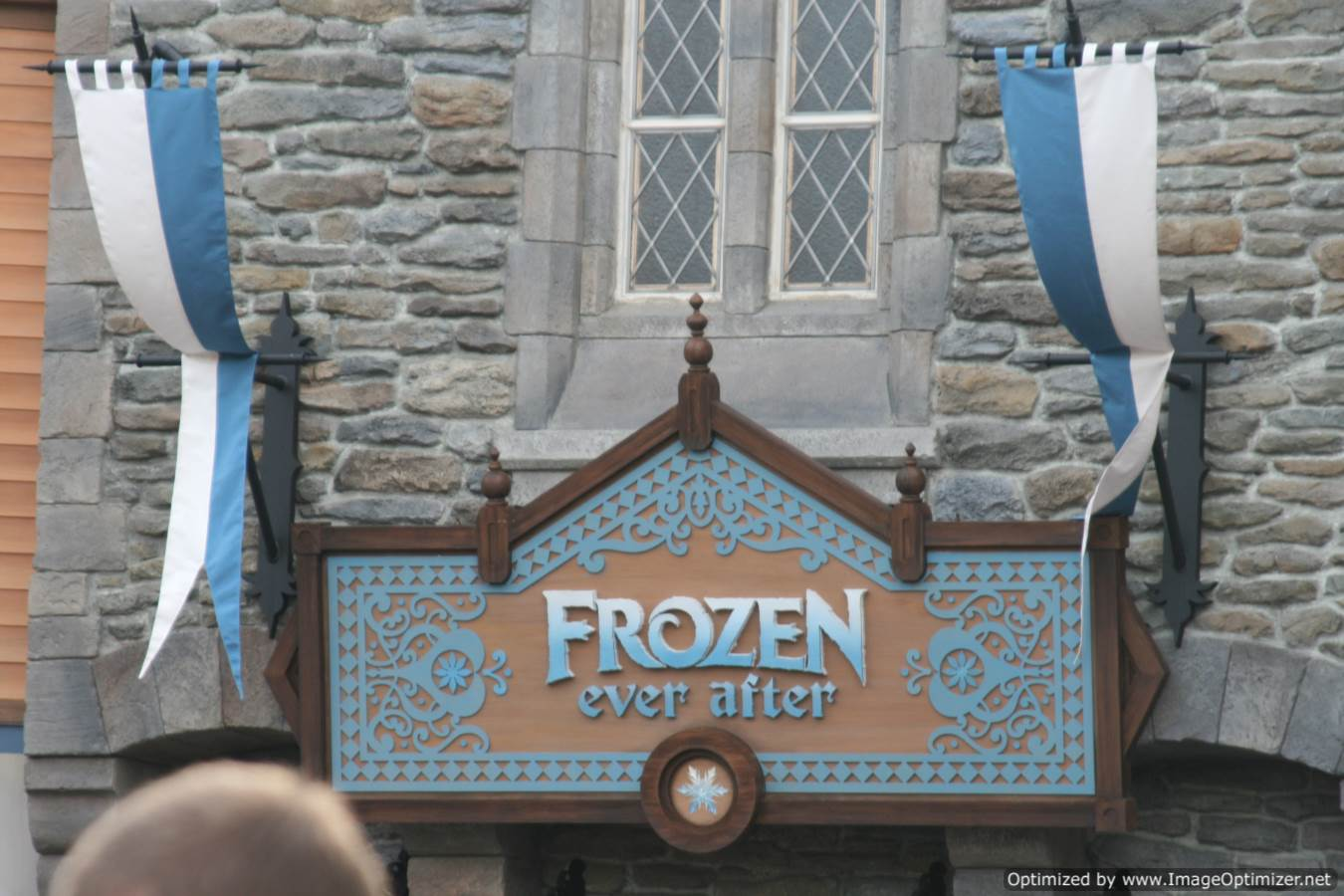 Epcot Frozen